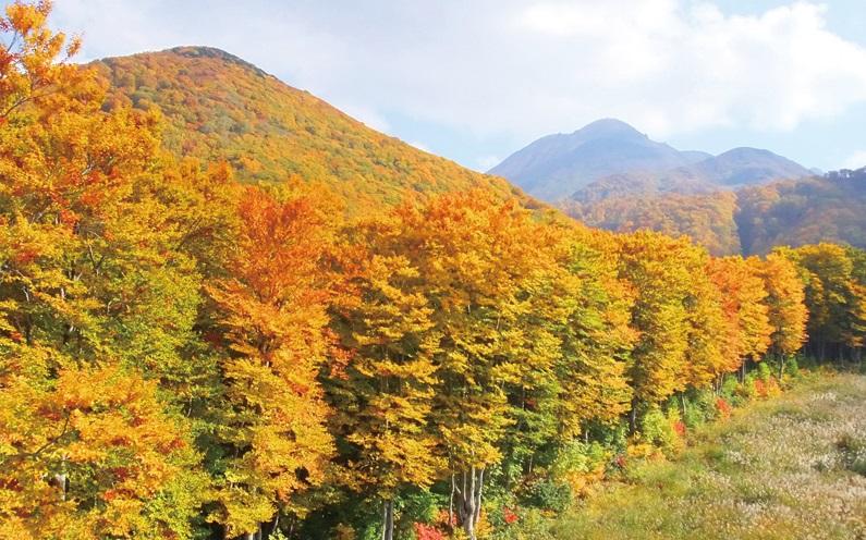 岩木山 紅葉
