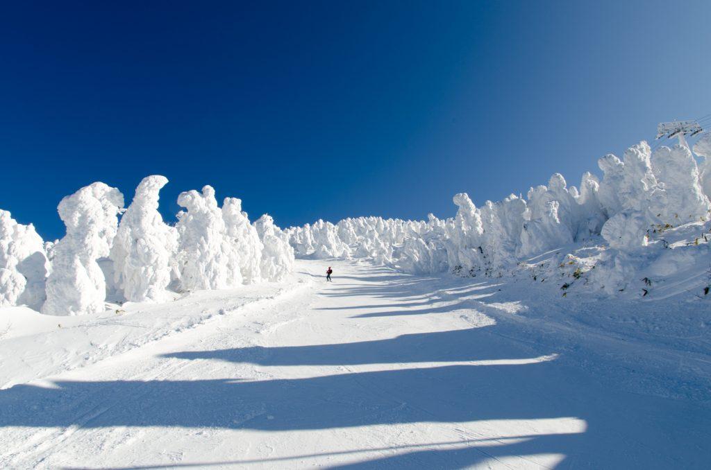 初心者 スキー場